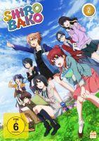 Shirobako - Staffel 2.1 - Episode 13-16 (DVD)