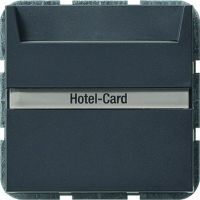 Gira Hotel-Card-Taster beschriftbar für System 55 anthrazit