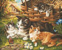 Malen nach Zahlen MNZ - Katzenfamilie