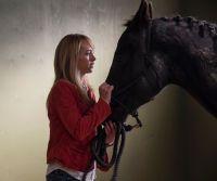 Heartland - Paradies für Pferde, Staffel 6 (Neuauflage) (6 DVDs)